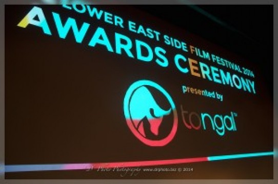 LES Film Festival 2014 – Awards Night
